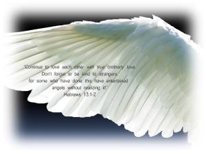 angel-wings copy